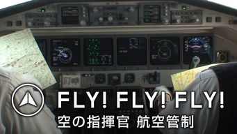 FLY! FLY! FLY! 空の指揮官 航空管制