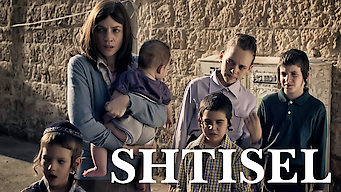 シュティセル家の人々